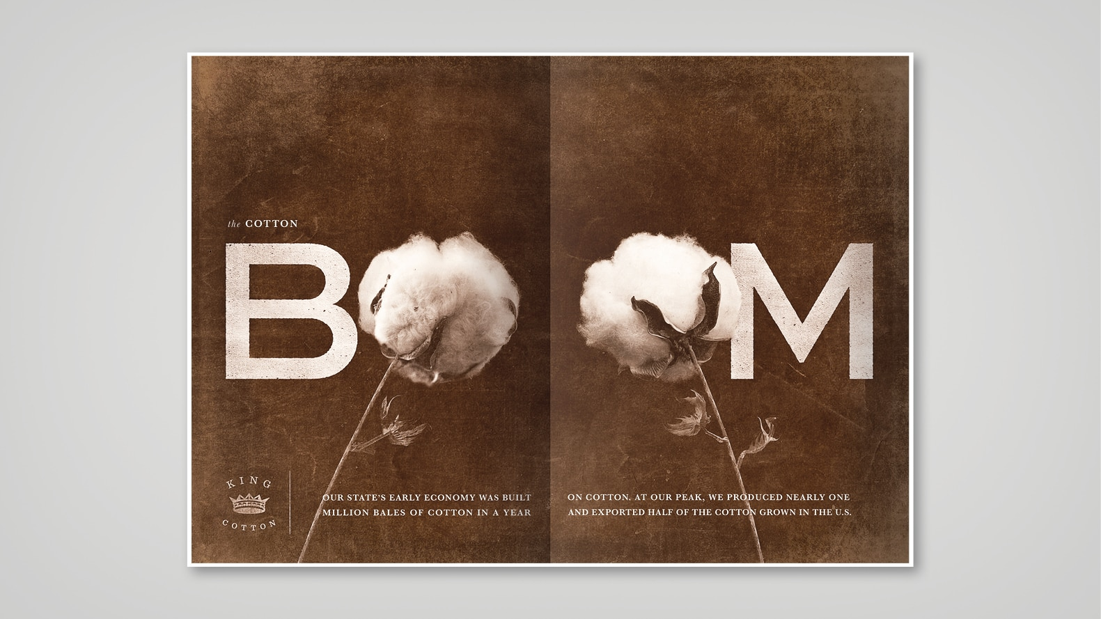 cotton spread