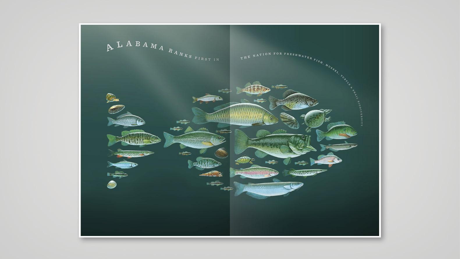 Alabama fish