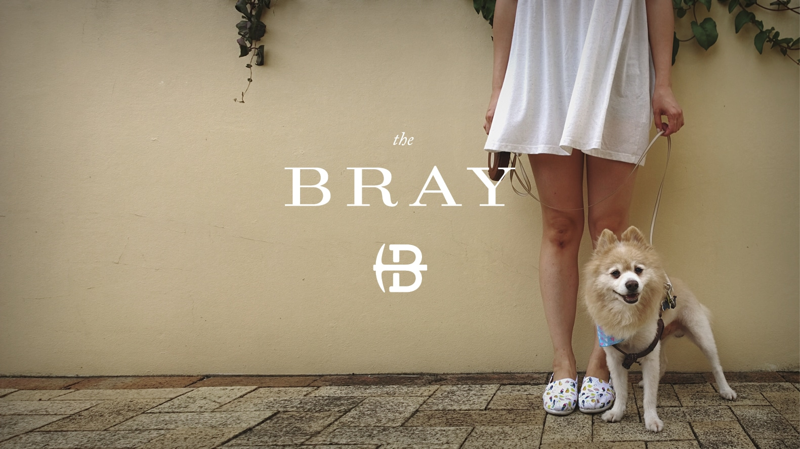girl walking dog at the Bray